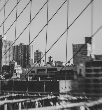 Brooklyn Bridge Net II