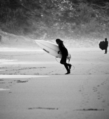 Surfers' Day K-9
