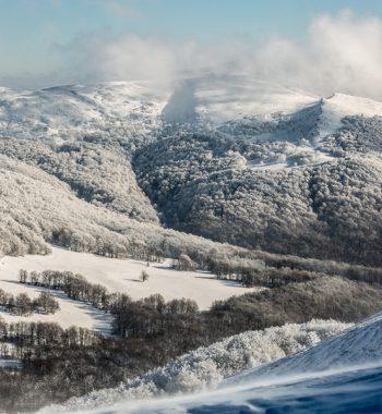 Winter in Poland IX