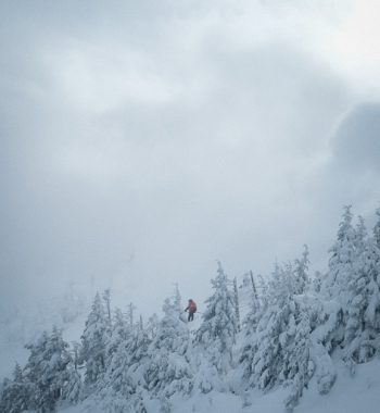 Whiteface III